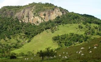 Cajueiro é uma cidade do estado de Alagoas.