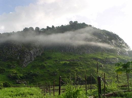Boca da Mata é um município brasileiro do estado de Alagoas.