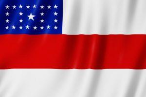 bandeira do Estado AM